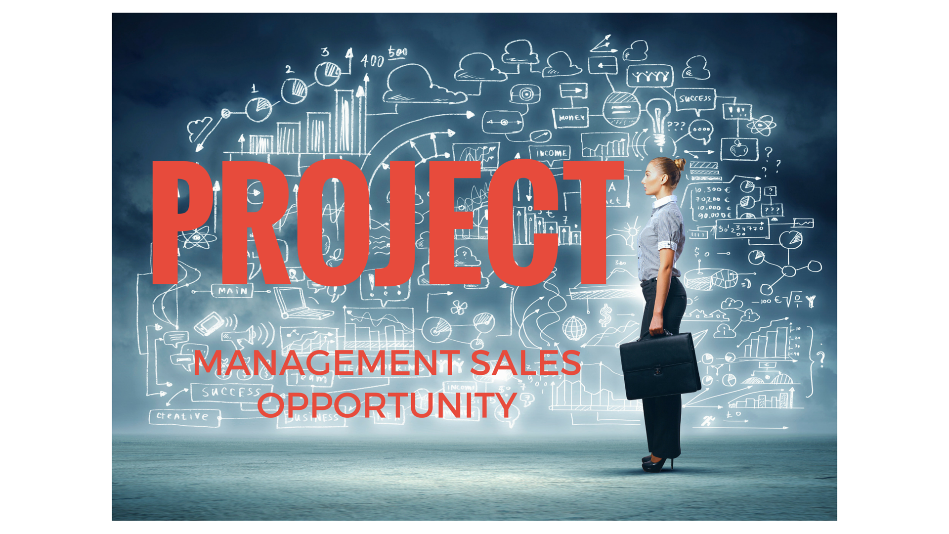 Project management solutions sales opportunity